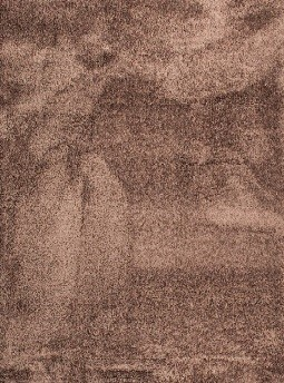 TIARA ECO-MODEL PLAIN-CULOARE BROWN 80x150