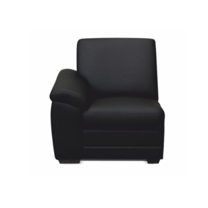 1-şed cu măner, piele eco neagră, stâng, BITER 1 1B